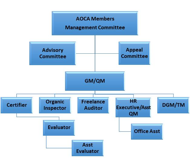 AOCA Organization Structure
